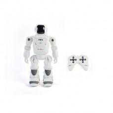 Big Smart Robot Lrg
