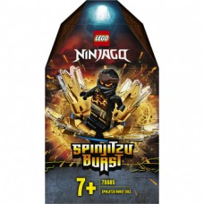 70685 Spinjitzu Burst-Cole
